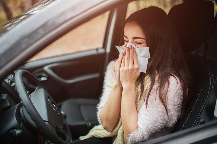 allergia di primavera al volante