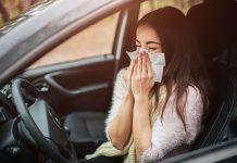 Allergie alla guida